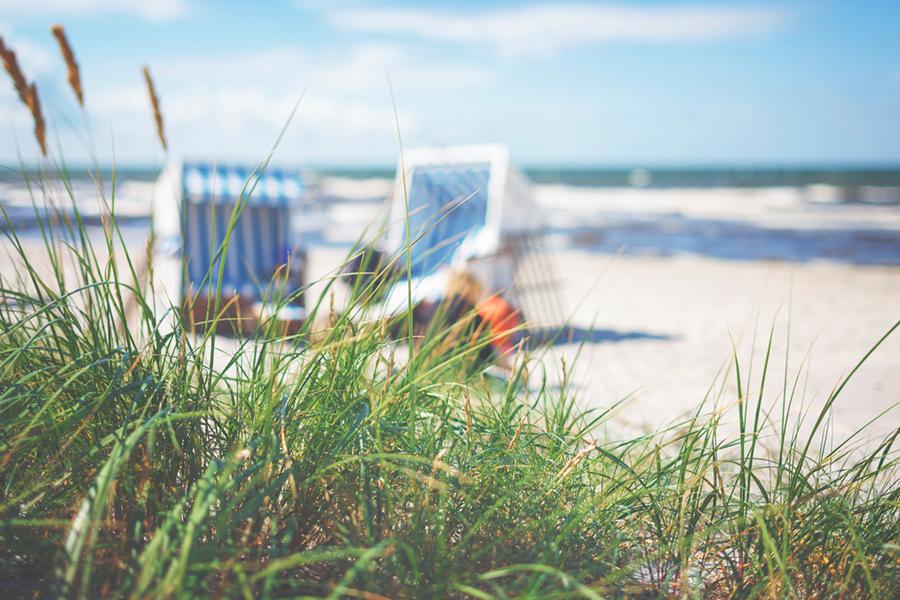 Zwei Strandkörbe am Strand, im Vordergrund hohes Seegras