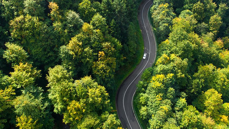Aus der Vogelperspektive ist ein weisses Auto zu sehen, dass auf einer geschlängelten Straße faehrt. umgeben von grünen Wäldern.