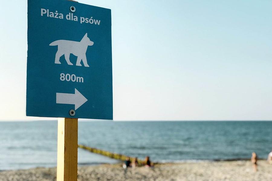Ausschilderung eines Hundestands auf Polnisch